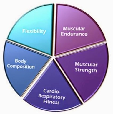 11 components of physical fitness The benefits of physical fitness are numerous and include better health development of physical fitness components such as muscle strength and endurance 11 fights depression effects of physical activity and exercise on mood are immediate.